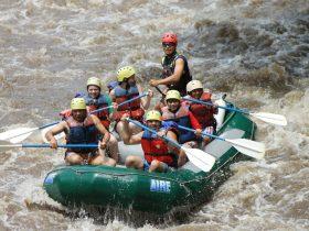 Costa Rica – Grupos