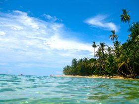 Encantos del Caribe y Pacífico