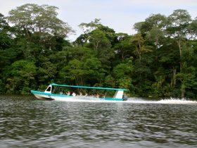 Canales Tortuguero