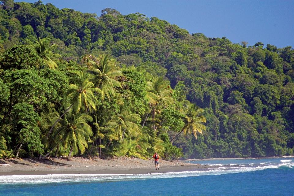 caminata-corcovado-costa-rica