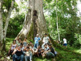 Tour Indígena del Térraba