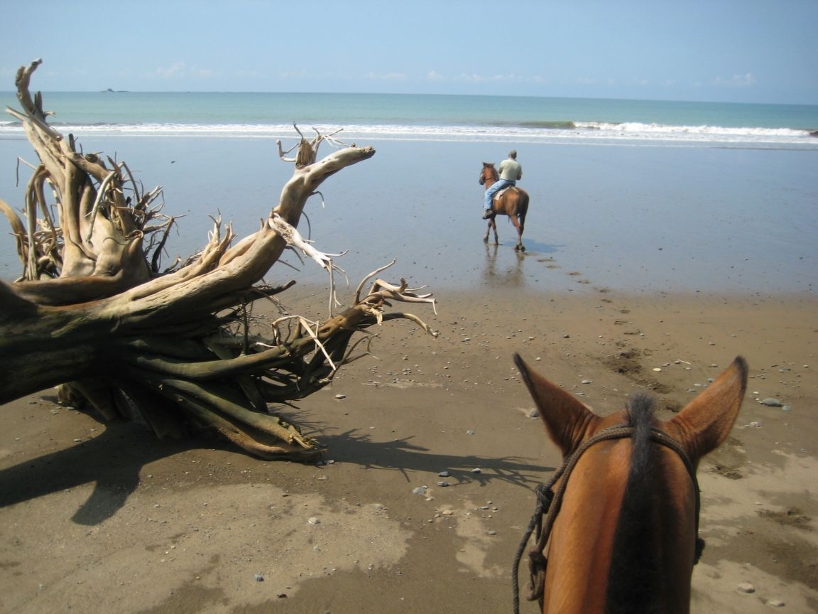 horseback-riding-to-deserted-beach-uvita4