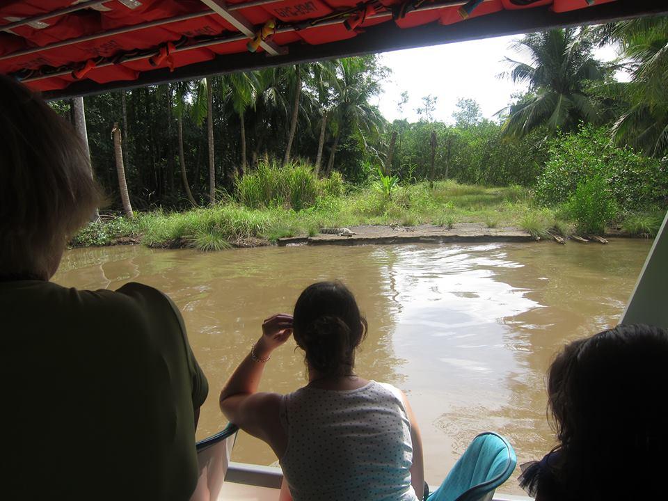 manglar-cocodrilo-costa-rica
