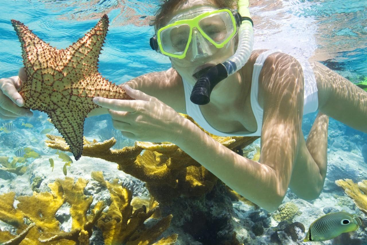 snorkel-isla-tortuga