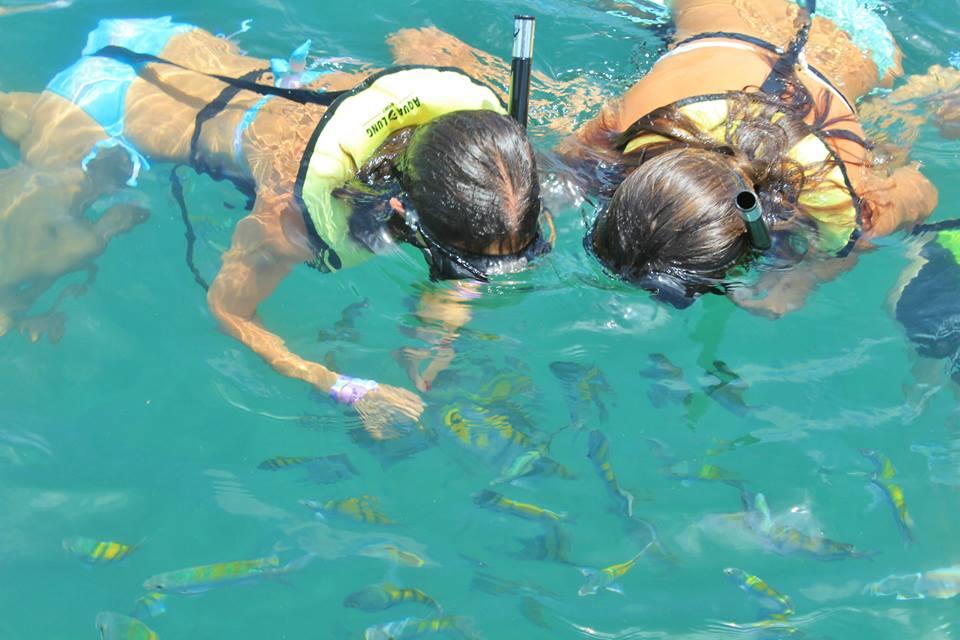 snorkel-peces-isla-tortuga