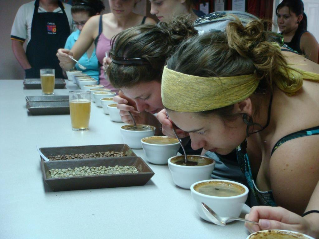 tour-cafe-costa-rica