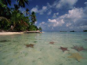 Bocas del Toro – Boquete