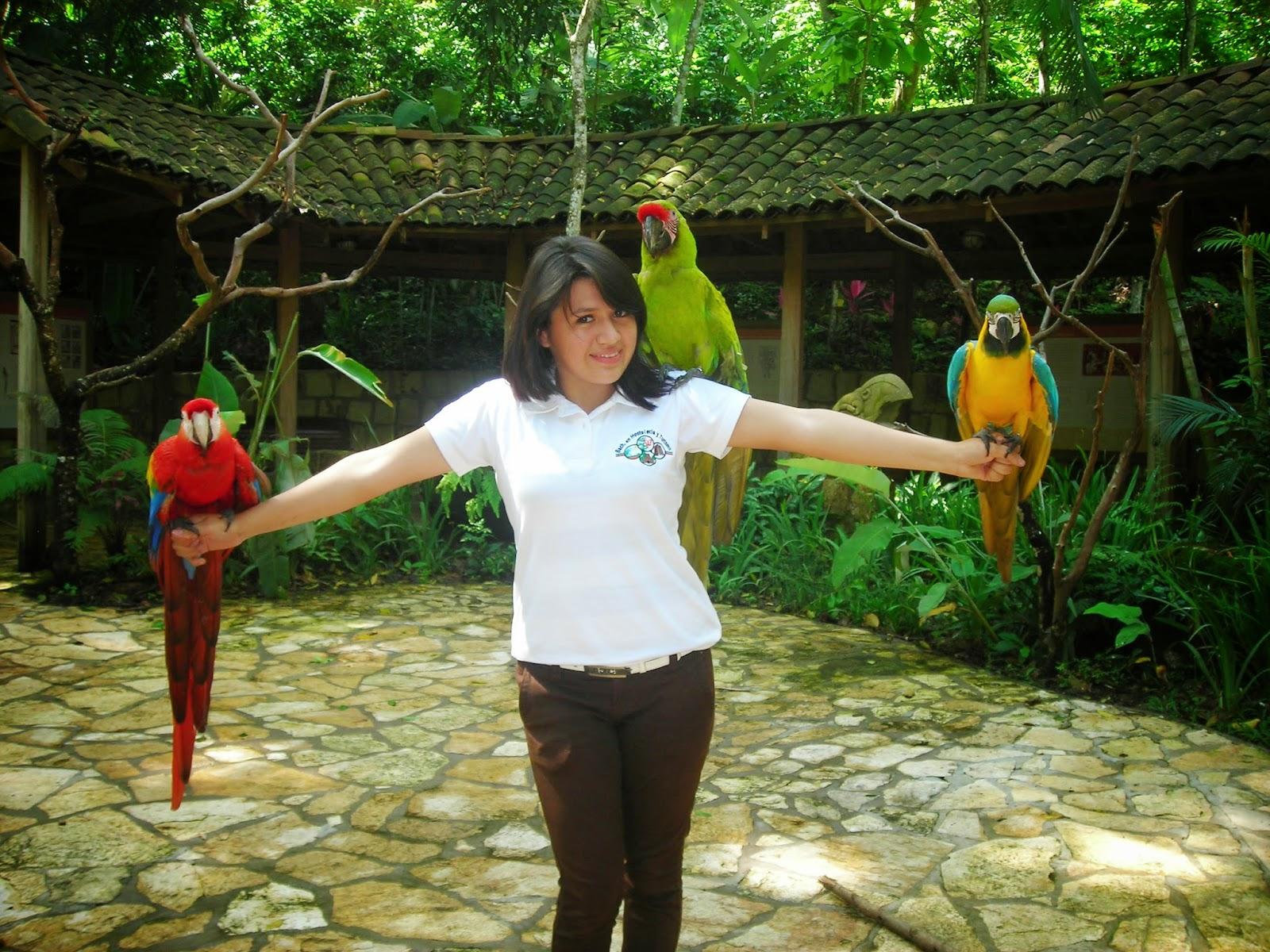 Parque-de-aves