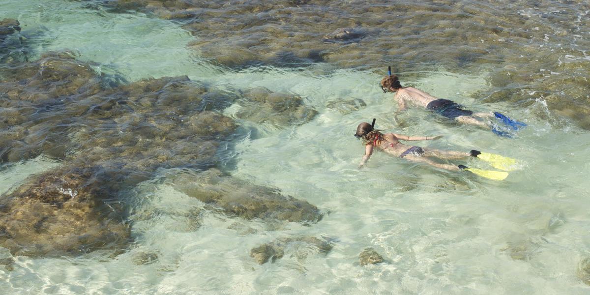 snorkel-corn-island